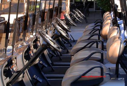 Noleggio golf cart elettrici